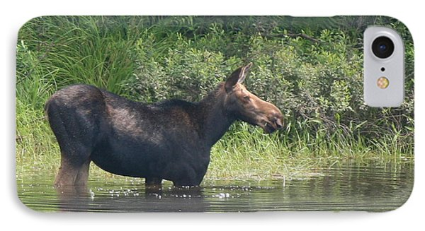 Cow Moose Breakfast IPhone Case by Neal Eslinger