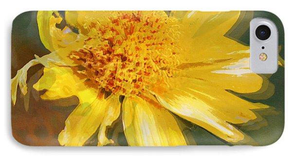 Cowpen Daisy No. 4 IPhone Case by Susan Schroeder