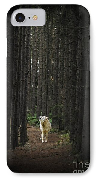 Coyote Howling In Woods IPhone Case by Dan Friend