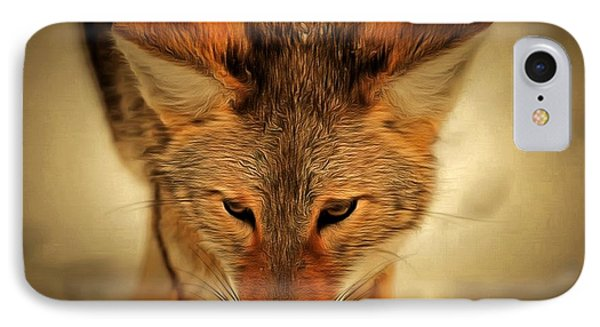 Coyote IPhone Case by Levi Saunders