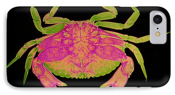 Crab Phone Case by D Roberts