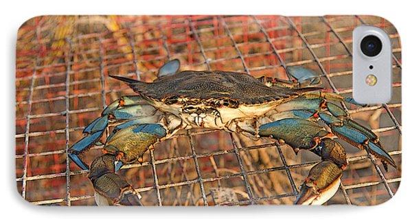 Crab Got Away IPhone Case by Luana K Perez