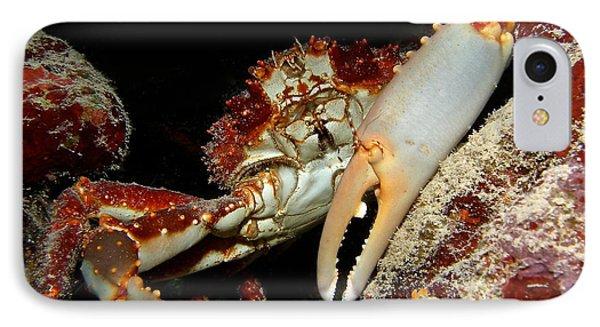 Crab Pose Phone Case by Nina Banks