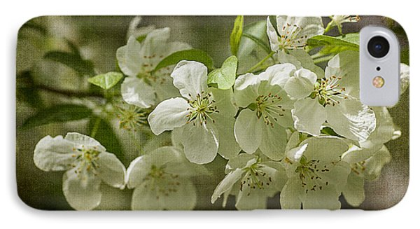Crabapple Blossoms 4 With Textures IPhone Case by Wayne Meyer