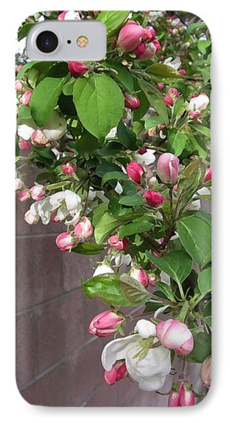 IPhone Case featuring the photograph Crabapple Blossoms And Wall by Donald S Hall