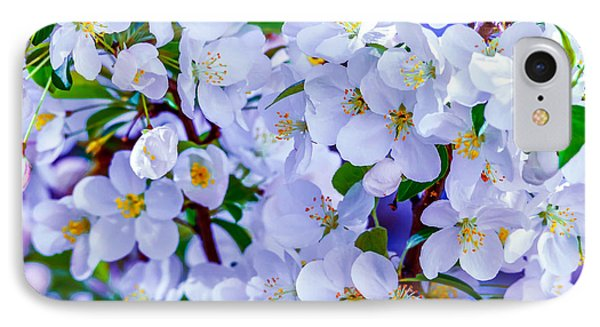 Crabapple Colors IPhone Case by Brian Stevens