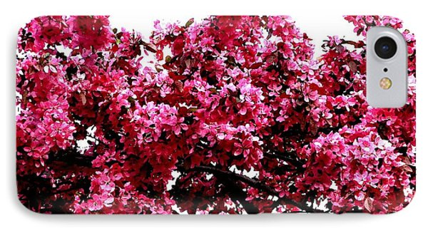 Crabapple Tree Blossoms Phone Case by Rose Santuci-Sofranko