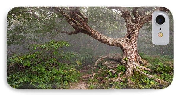 Craggy Gardens Blue Ridge Parkway Asheville Nc - Enduring Craggy Phone Case by Dave Allen