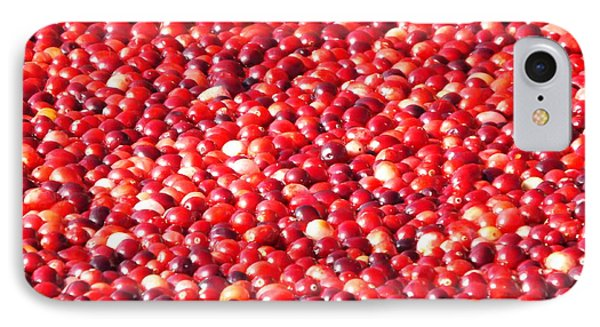 IPhone Case featuring the photograph Cranberries by Jodi Terracina