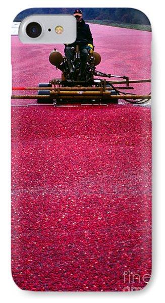 Cranberry Harvest Phone Case by Eva Kato