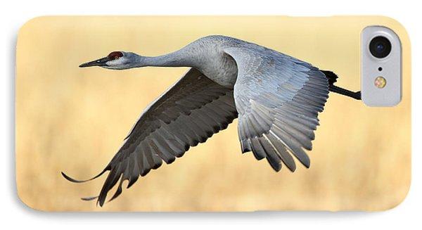 Crane Over Golden Field IPhone Case by Bryan Keil