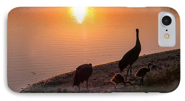 Cranes At Sunset IPhone Case by Zina Stromberg