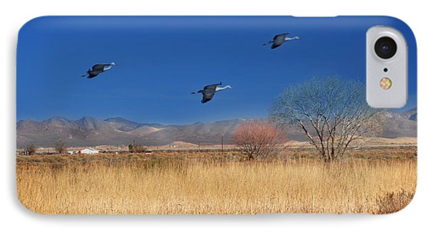 Cranes In Flight IPhone Case by Barbara Manis