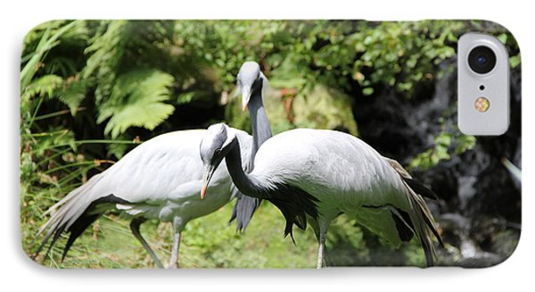 Cranes IPhone Case