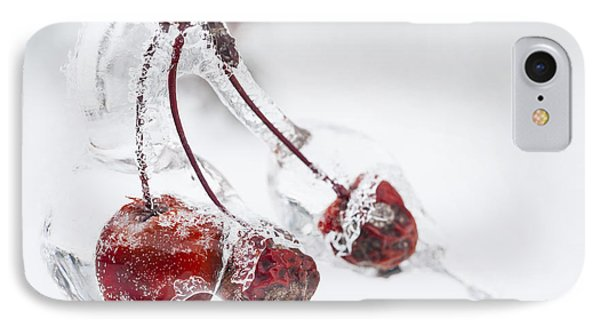 Crab Apples In Ice IPhone Case by Elena Elisseeva