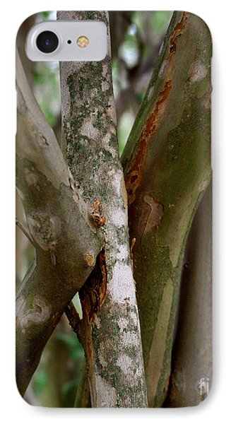 Crape Myrtle Branches IPhone Case by Peter Piatt
