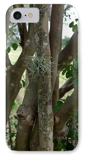 IPhone Case featuring the photograph Crape Myrtle Growth Ball by Peter Piatt