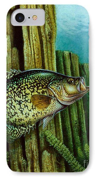 Crappie And Posts Phone Case by Jon Q Wright