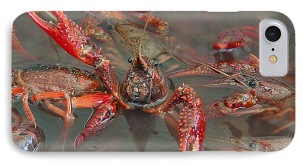 IPhone Case featuring the photograph Crawfish Boil Galveston Style by John Black