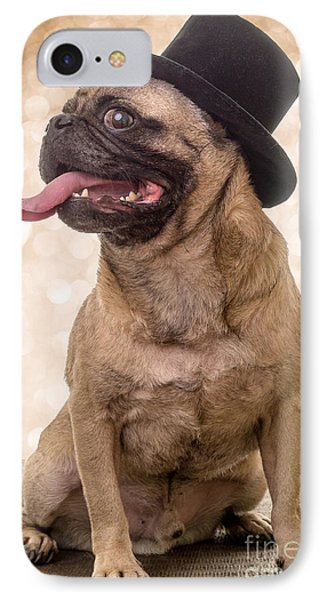 Crazy Top Dog IPhone Case by Edward Fielding