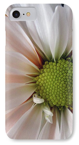 IPhone Case featuring the photograph Creamsicle by Jean OKeeffe Macro Abundance Art