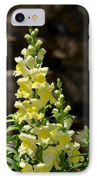 Creamy Yellow Snapdragon Phone Case by Maria Urso