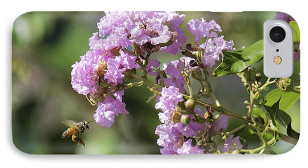 Crepe Myrtle And Honey Bee Phone Case by Jason Politte
