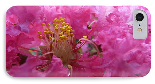 Crepe Myrtle In The Middle IPhone Case by Fortunate Findings Shirley Dickerson