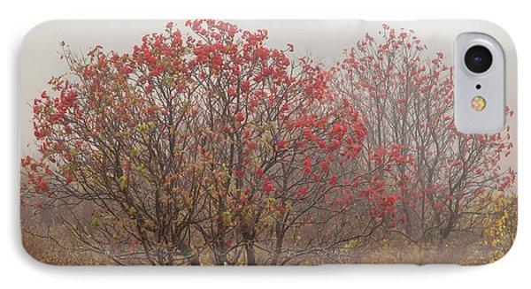 Crimson Fog IPhone Case by Melinda Ledsome