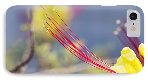 Crimson Threads IPhone Case by Linda Lees