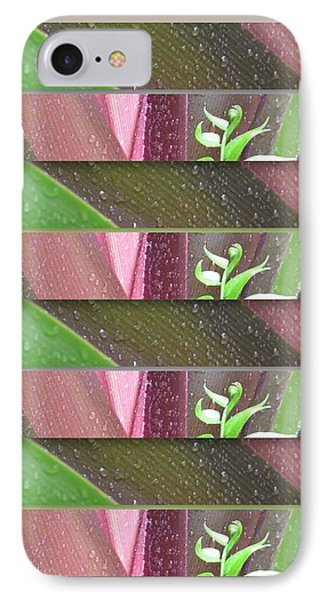 IPhone Case featuring the photograph Crinum Lily Collage3 by Darla Wood