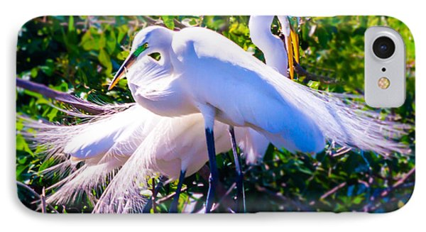 Criss-cross Egrets IPhone Case by Susan Molnar