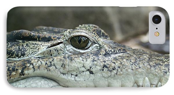 IPhone Case featuring the photograph Crocodile Animal Eye Alligator Reptile Hunter by Paul Fearn