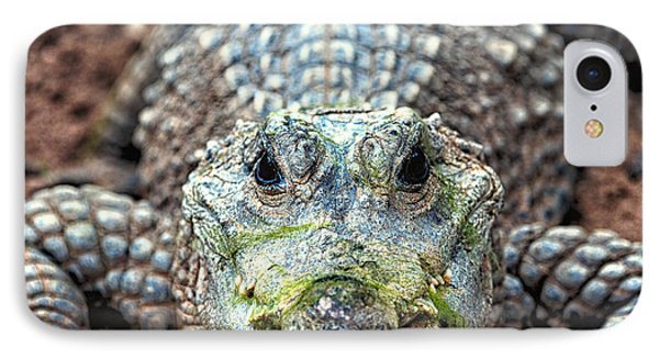 Crocodile Close-up IPhone Case by Goyo Ambrosio