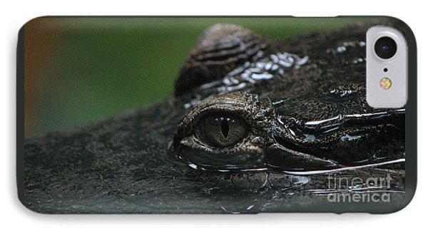 Croc's Eye-1 Phone Case by Gary Gingrich Galleries