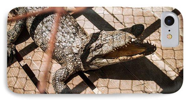 Crossbred Crocodile IPhone Case