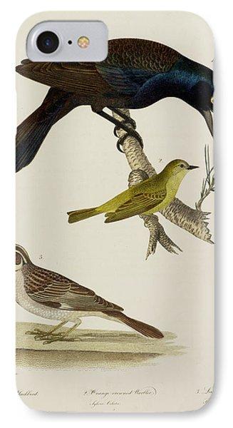 Crow Blackbird. Warbler. Finch IPhone Case by British Library