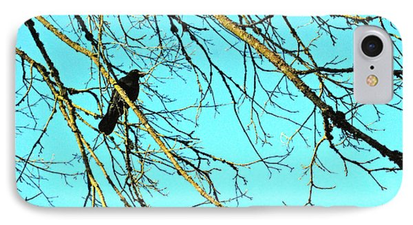 IPhone Case featuring the photograph Crow by Kjirsten Collier