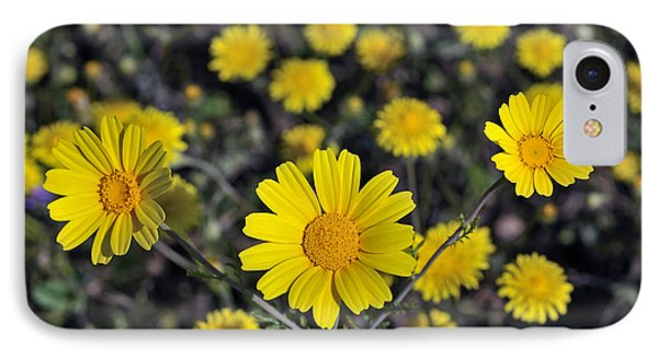 IPhone Case featuring the photograph Crown Daisies by George Atsametakis
