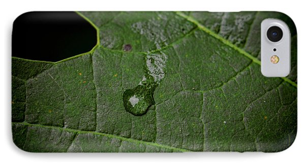 Crying Leaf IPhone Case