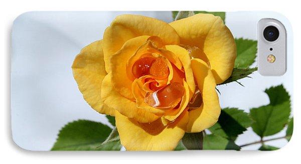 Crying Rose IPhone Case by Krissy Katsimbras