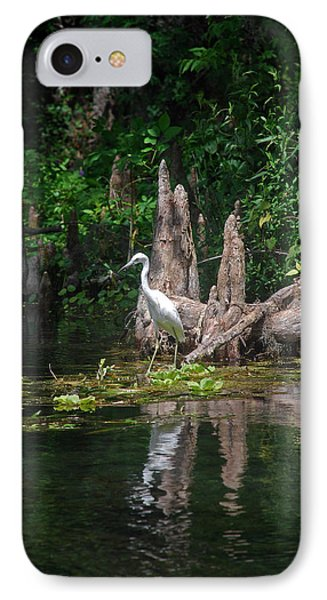 Crystal River Egret Phone Case by Skip Willits