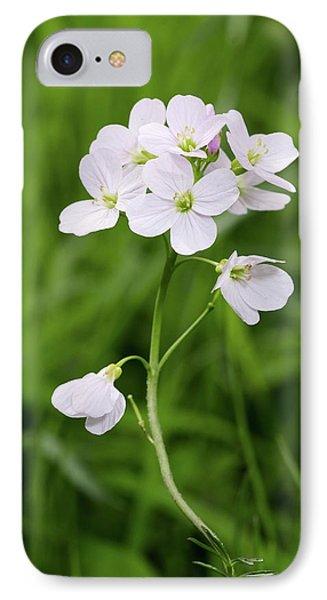 Cuckoo iPhone 7 Case - Cuckoo Flower (cardamine Pratensis) by Annie Haycock