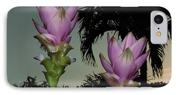 IPhone Case featuring the photograph Curcuma Hybrid Flowers by Greg Allore