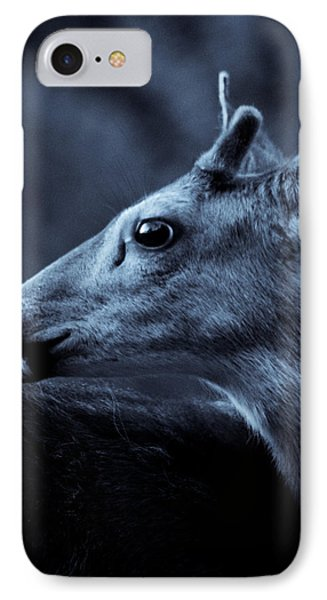 IPhone Case featuring the photograph Curious  by Adria Trail