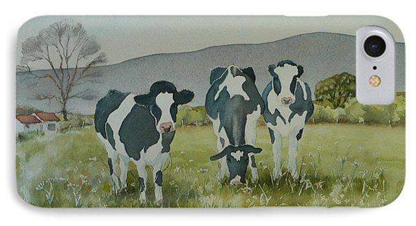 Curious Cows IPhone Case by Jo Appleby