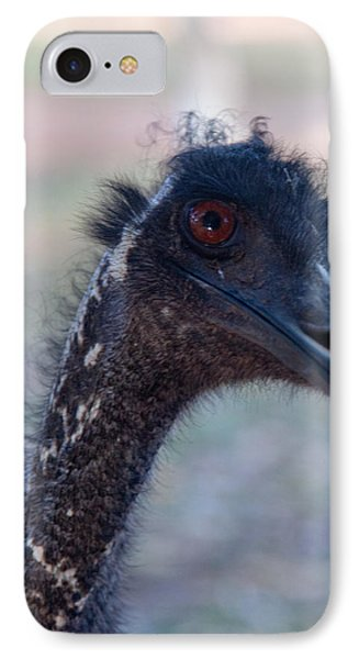 IPhone Case featuring the photograph Curious Emu by Carole Hinding