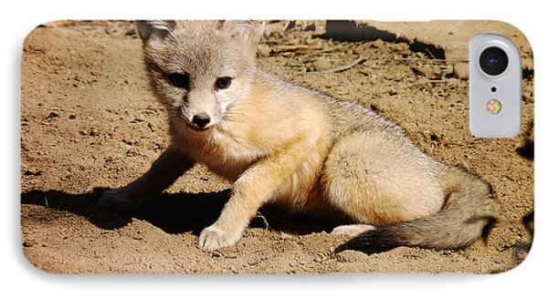 Curious Kit Fox IPhone Case