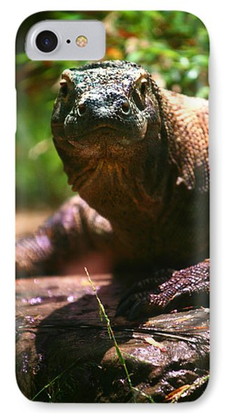 Curious Komodo IPhone Case by Lon Casler Bixby