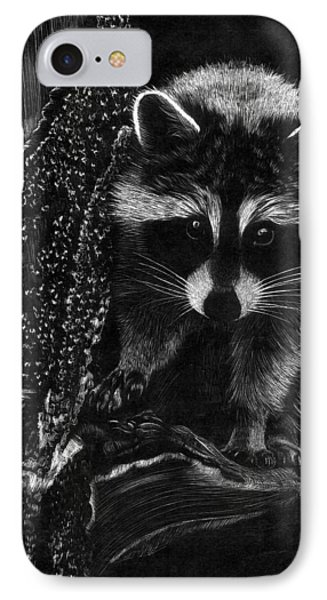 Curious Raccoon IPhone Case by Dustin Miller